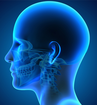 Head & Neck Oncology
